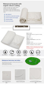 White Color Anti-UV Waterproof Organic Silicon Coated Canvas Tarpaulin pictures & photos