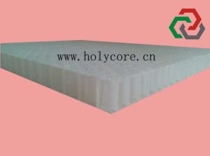 PP Honeycomb Panel