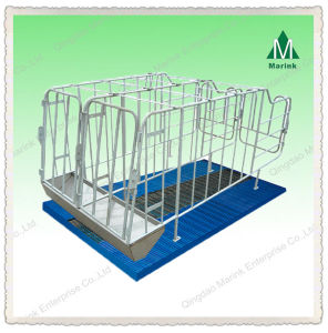 Good Quality Gestation Stall Pig Equipment/Pig Crate pictures & photos