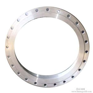 Stainless Steel Flange Fitting Welding Neck Carbon Steel Flange pictures & photos