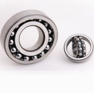 1304 Etn9 Industrial Components Self-Aligning Ball Bearing SKF Bearings pictures & photos