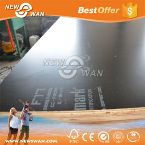 Poplar Birch Black Film Faced Plywood Factroy to Malaysia (1220X2440mm) pictures & photos