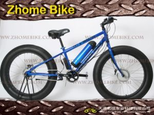 Fat E-Bike/Fat a/T Bike/26X4.0 26X4.8 Fat Bicycles