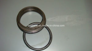 Oil Seal Group pictures & photos