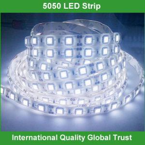 DC12V SMD 5050 Waterproof LED Light Strip