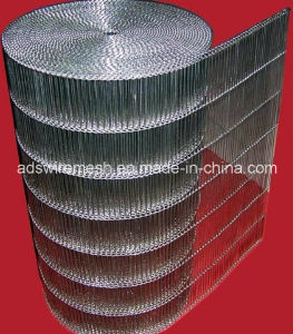 Flat Flex Conveyor Belt & Wire Mesh Belt pictures & photos