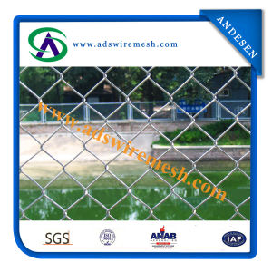 50*50mm 100*100mm Galvanzied & PVC Chain Link Fence (ISO9001) pictures & photos