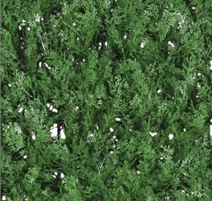 Artificial Fire Retardant Moss for Fence (MW16038) pictures & photos