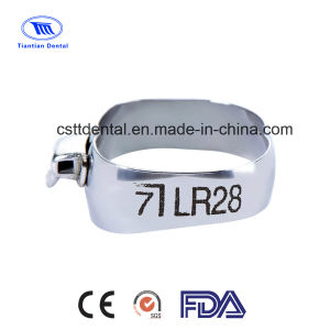 Orthodontic Straight Wire MBT Molar Bands