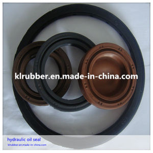 NBR Tc Oil Seals for Aotu and Industrial Products pictures & photos