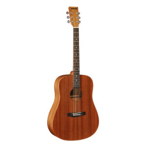 Profesional High End Wooden Acoustic Guitar (AGW-X6)