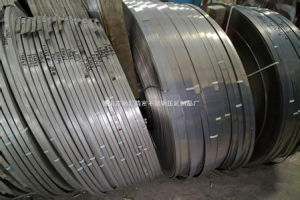 AISI 316L Stainless Steel Strip pictures & photos
