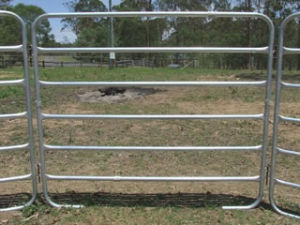 Hot Selling Cattle Panel (Coated)