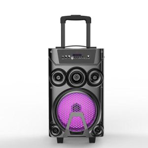 8 Inch Woofer Outdoor Wireless Portable Trolley Bluetooth Speaker