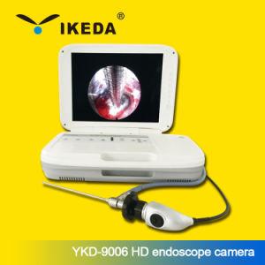 China Ikeda Medical Video HD Ent Endoscope Camera - China Ent
