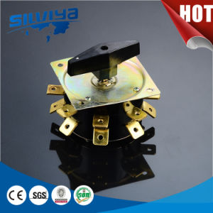 2 Pole Rotary Switch for Welding Matchine pictures & photos