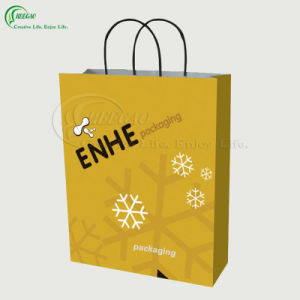 High Quality Paper Bags (KG-PB048)