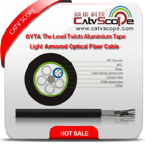 Structure Cabling Optical Fiber GYTA Level Twist Aluminium Tape Light Armored Optical Fibe