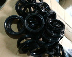 Sck Oil Seal, NBR Oil Seal, Viton Oil Seal pictures & photos