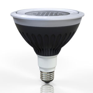 Waterproof LED PAR38 Spotlight for Landscape Lighting