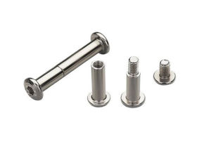 High Precision Nonstandard Bolt with CNC Processing pictures & photos