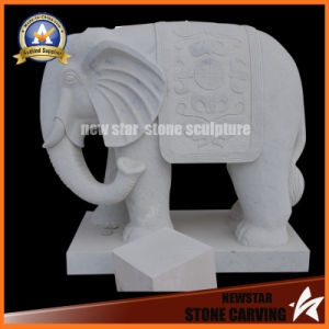 Stone Animal for Garden Decoratiion pictures & photos