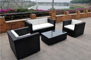 PE Rattan Outdoor Used Sectional Wicker Sofa (S0063)