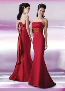 Mermaid Evening Dresses (davilf044)