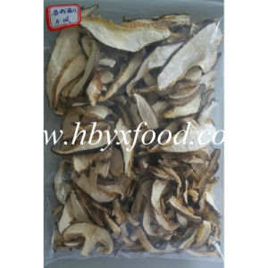 Grown in 2016 Top Quality Dried Mushroom Slices