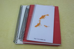Spiral Binding Wire pictures & photos