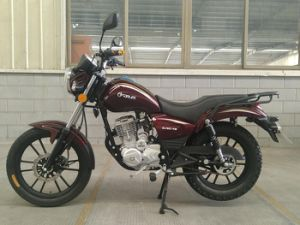 125cc/150cc/200cc China Cruiser Air Cooled on/off Road Suzuki Type Tiger Motorcycle (SL150-TG) pictures & photos