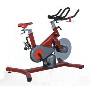 New Popular Gym Use Swing Spinning Bike (ALT-8006) pictures & photos