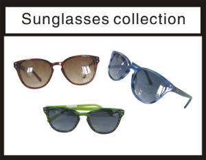 Acetate and Top New Good Quality Lady Sunglasses pictures & photos