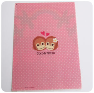 factory custom plastic printing file folder (office supplies report bag) pictures & photos