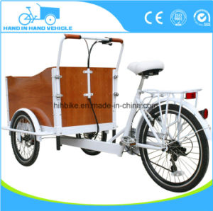 Holland 3 Wheels Electric Motorcycle Tricycle Cargo Bicycle pictures & photos
