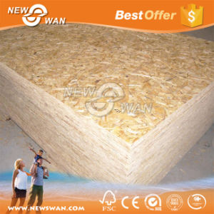 15mm OSB Board / 16mm OSB Panel pictures & photos
