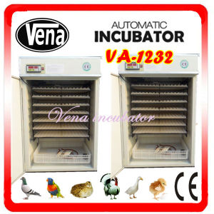 Bird/Goose/Chicken/Duck Egg Incubator Va-1232 pictures & photos