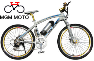 Golden Wheel Electric Bicycle for Sport pictures & photos