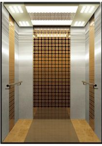 Luxury Commercial and Residential Passenger Lift Without Machine Room pictures & photos