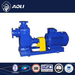 Big Capacity Cast Iron Self-Priming 5m Water Pump pictures & photos