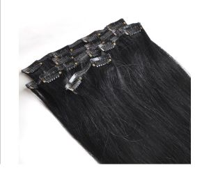100% Human Brazilian Remy Clip in Human Hair Extension