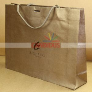 Professional Shopping Bag Paper Bag Manufacturer pictures & photos