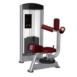 Gym Equipment GS617 Rotary Torso