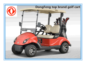 2 Seats Battery Operated Stepless Speed Change Golf Car