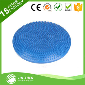 Colorful Eco PVC Massage Cushions with Pumbs