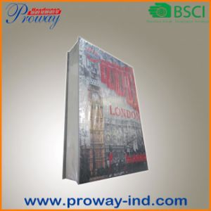 Book Safe with Coated Paper Cover (B-S19-FCB) pictures & photos