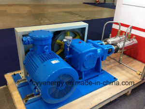 Cyyp 66 Uninterrupted Service Large Flow and High Pressure LNG Liquid Oxygen Nitrogen Argon Multiseriate Piston Pump pictures & photos