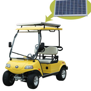 Solar Panel Electric Golf Car/Cart/Buggy 2-Seater pictures & photos