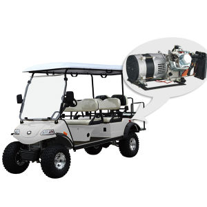 Hybrid Generator Golf Buggy/Hunting Del2042D2z pictures & photos