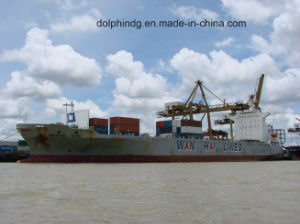 Shipping Forwarder: FCL Ocean Logistics From China to Lat Krabang